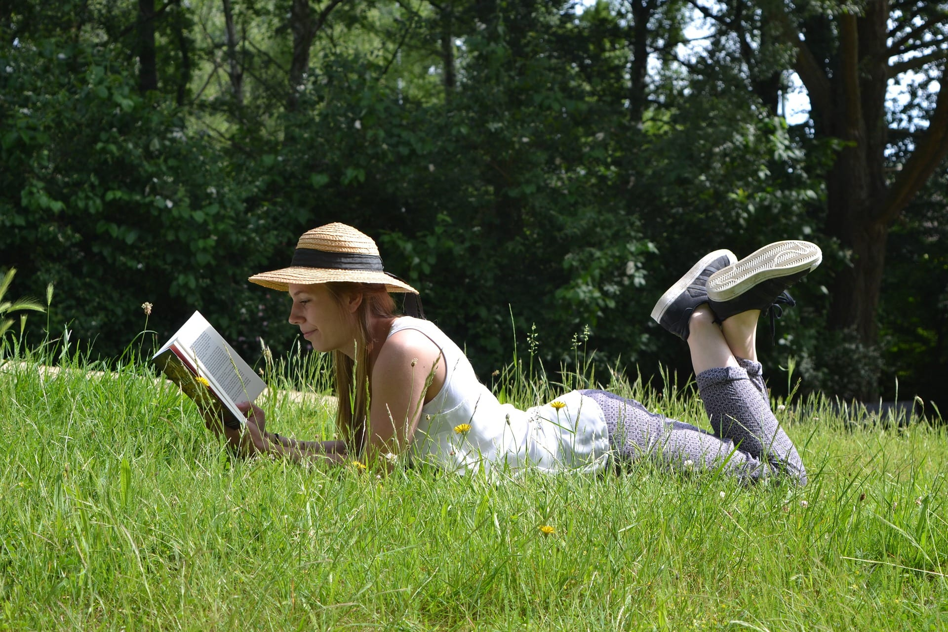 Учебная литература для преподавателя на лето