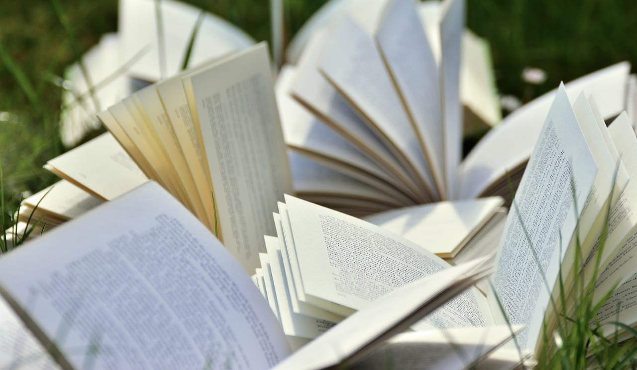 Как использовать художественную литературу в преподавании английского языка