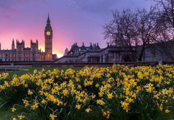 В какой англоговорящей стране вам лучше жить? (тест)