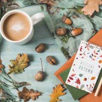 4 занимательных chick lit романа для осеннего вечера