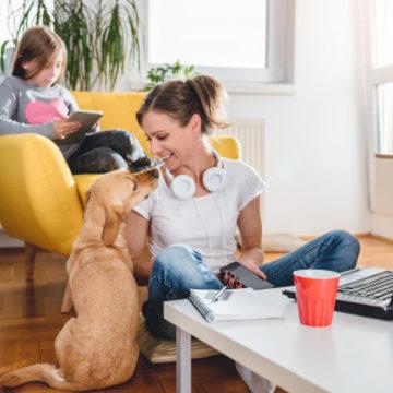 Как работать из дома и не сойти с ума