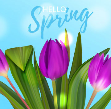 Spring Expressions: Test Yourself