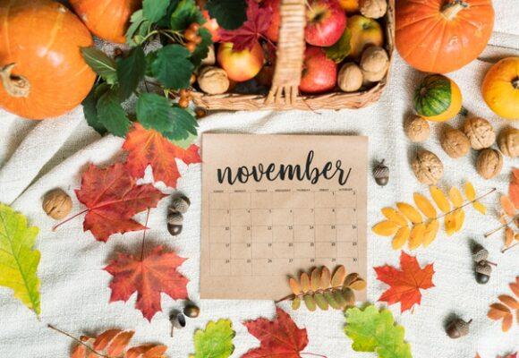 События для учителей английского в ноябре 2020