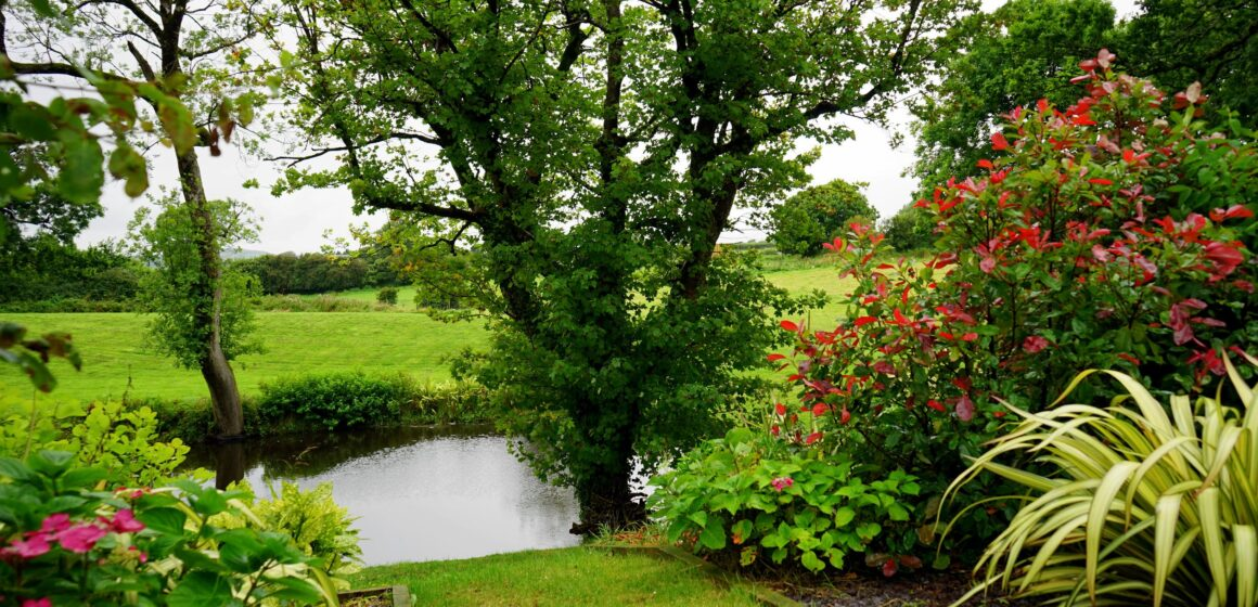Gardening at a country house (lesson plan)