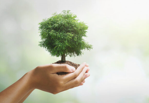 World Environment Day (worksheet)