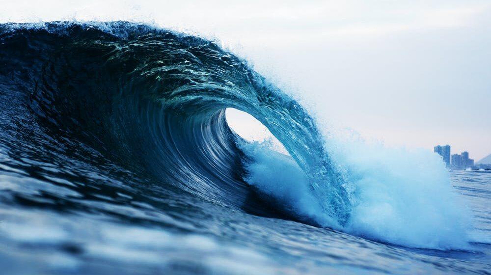 Всемирный день океана (Ocean Day). Упражнения