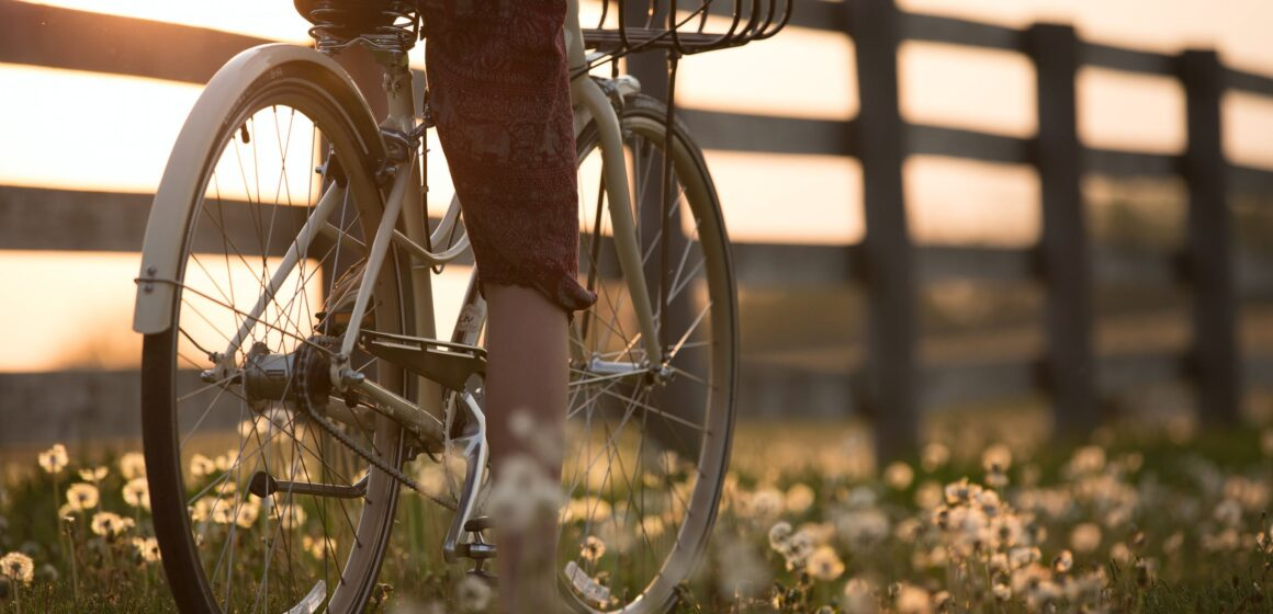 World Bicycle Day (lesson plan)