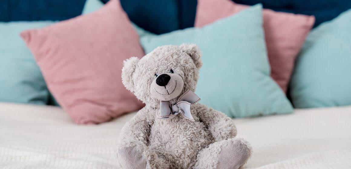 Teddy Bear Picnic Day (Worksheet)