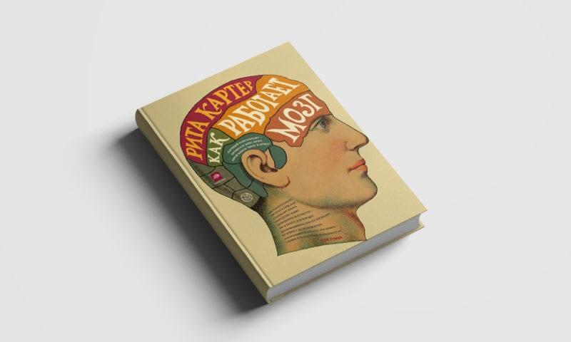 Что читать учителю, чтобы понимать, как работает мозг?