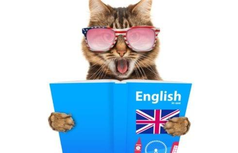 шутки для уроков английского