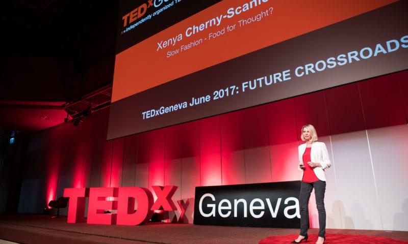 Познавательные видео от TED и способы работы с ними